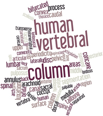 scoliosis: Abstract word cloud for Human vertebral column with related tags and terms Stock Photo