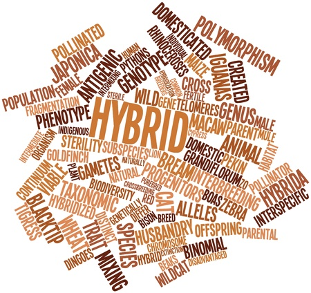 hybrid: Abstract word cloud for Hybrid with related tags and terms