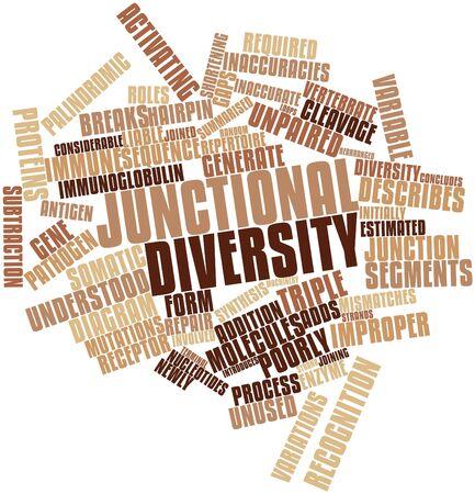 repertoire: Abstract woordwolk voor Junctionele diversiteit met gerelateerde tags en voorwaarden