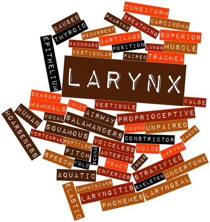 Abstract word cloud for Larynx with related tags and terms Stock Photo - 16632318