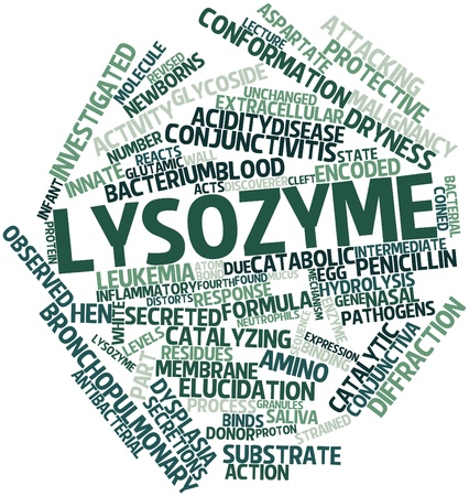 revised: Abstract word cloud for Lysozyme with related tags and terms Stock Photo