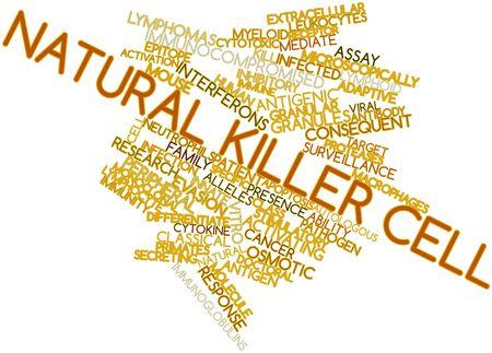 ipotesi: Word cloud astratto a cellule killer naturali con tag e termini correlati Archivio Fotografico