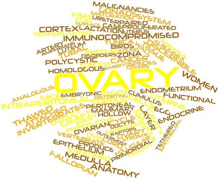 ova: Abstract word cloud for Ovary with related tags and terms Stock Photo