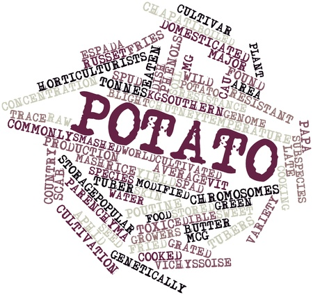 baked potatoes: Abstract word cloud for Potato with related tags and terms Stock Photo