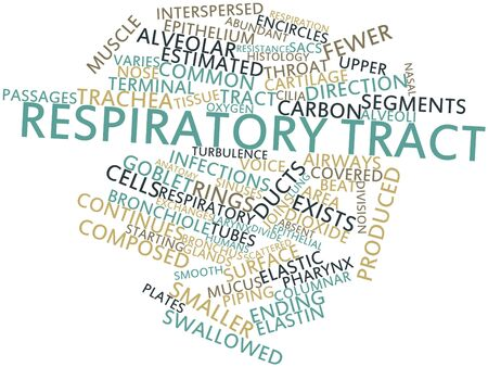 関連するタグと用語の呼吸器管の抽象的な単語雲