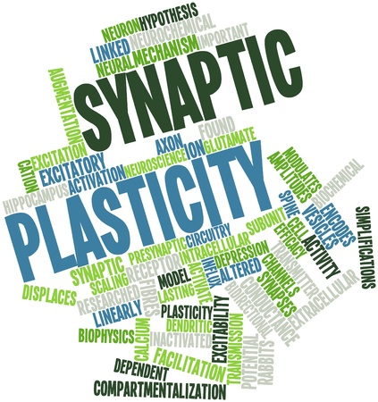 vesicles: Abstract word cloud for Synaptic plasticity with related tags and terms Stock Photo