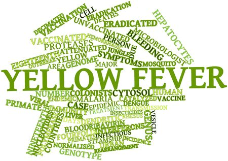virulent: Abstract word cloud for Yellow fever with related tags and terms Stock Photo