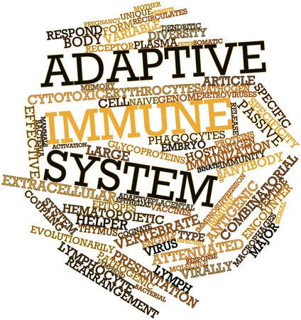 attenuated: Abstract word cloud for Adaptive immune system with related tags and terms
