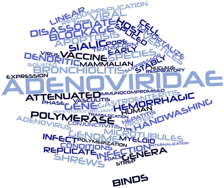 unrelated: Abstract word cloud for Adenoviridae with related tags and terms