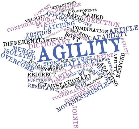named person: Abstract word cloud for Agility with related tags and terms
