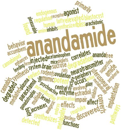 Abstract word cloud for Anandamide with related tags and terms