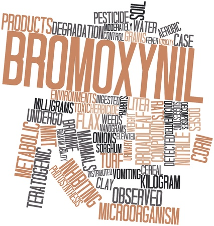 names: Abstract word cloud for Bromoxynil with related tags and terms Stock Photo