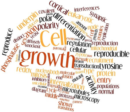 cortical: Abstract word cloud for Cell growth with related tags and terms Stock Photo
