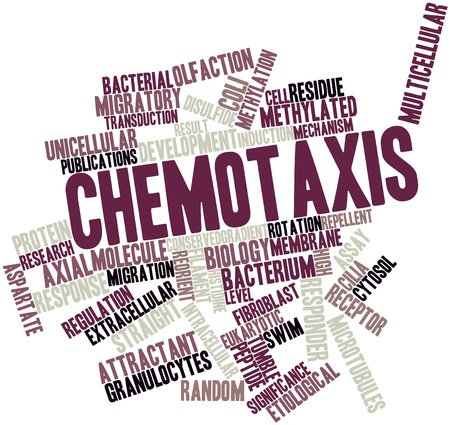 methyl: Abstract word cloud for Chemotaxis with related tags and terms Stock Photo