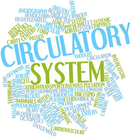 aortic: Abstract word cloud for Circulatory system with related tags and terms