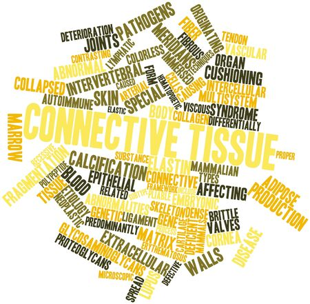 vascular tissue: Abstract word cloud for Connective tissue with related tags and terms