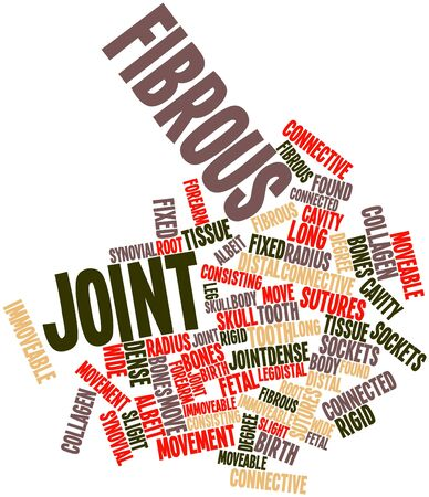 connective tissue: Abstract word cloud for Fibrous joint with related tags and terms Stock Photo