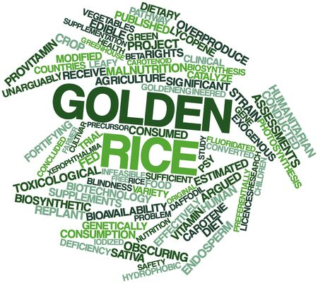 argued: Abstract word cloud for Golden rice with related tags and terms Stock Photo