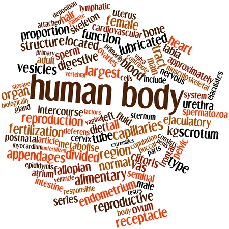 testes: Abstract word cloud for Human body with related tags and terms