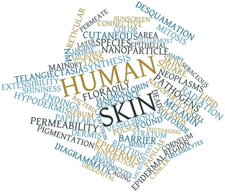 skin burns: Abstract word cloud for Human skin with related tags and terms
