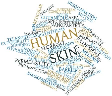 urogenital: Nube palabra abstracta para la piel humana con etiquetas y t�rminos relacionados