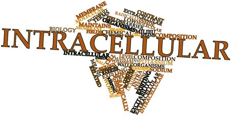 extracellular: Abstract word cloud for Intracellular with related tags and terms