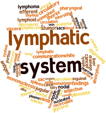 distal: Word cloud astratto per il sistema linfatico con tag correlati e termini