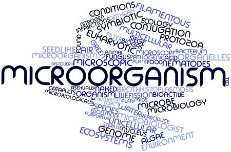 Abstract word cloud for Microorganism with related tags and terms Stock Photo - 16678320