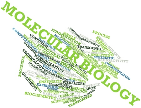 biomolecules: Abstract word cloud for Molecular biology with related tags and terms Stock Photo