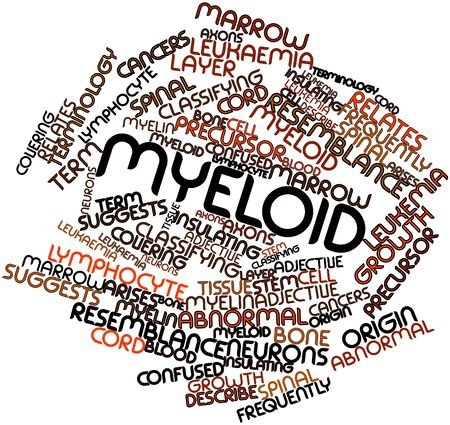 classifying: Abstract word cloud for Myeloid with related tags and terms