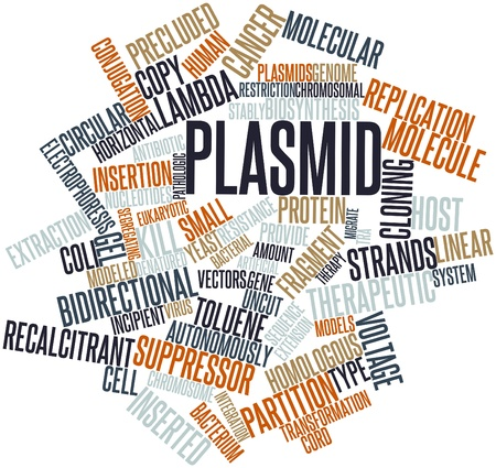 Abstract word cloud for Plasmid with related tags and terms Stock Photo - 16678526