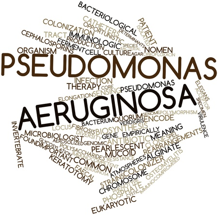 fibrosis: Abstract word cloud for Pseudomonas aeruginosa with related tags and terms Stock Photo