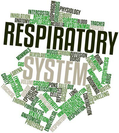 aparato respiratorio: Nube palabra abstracta para el sistema respiratorio con etiquetas y términos relacionados