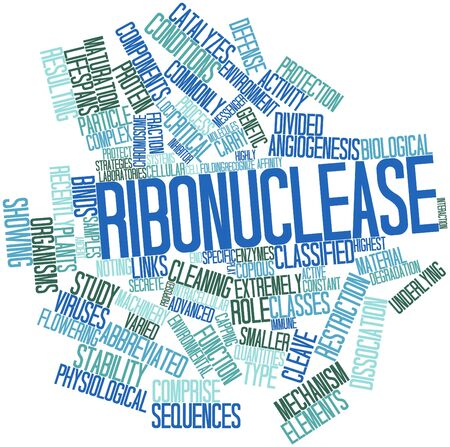 enzymes: Abstract word cloud for Ribonuclease with related tags and terms Stock Photo
