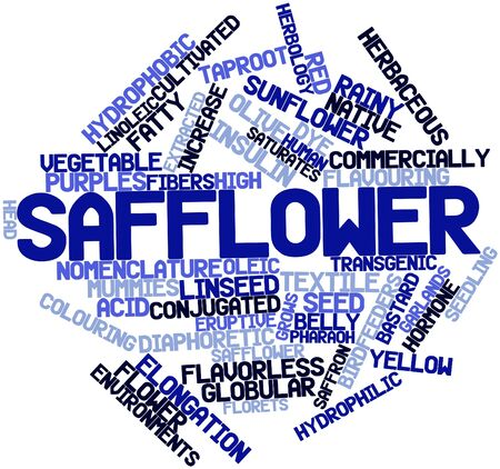 Abstract word cloud for Safflower with related tags and terms Banco de Imagens