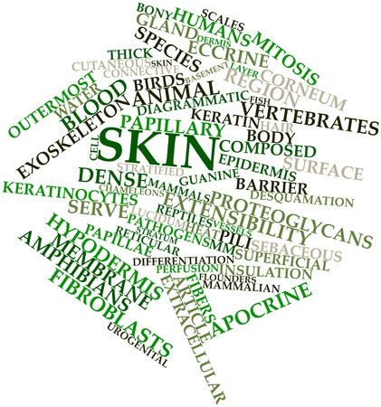 macrophages: Abstract word cloud for Skin with related tags and terms