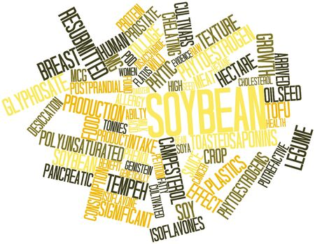 Abstract word cloud for Soybean with related tags and terms Stock Photo - 16678446