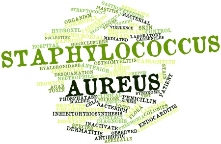 inhibitory: Abstract word cloud for Staphylococcus aureus with related tags and terms