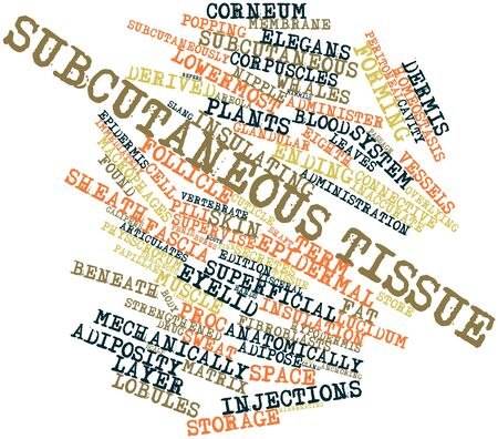 skin burns: Abstract word cloud for Subcutaneous tissue with related tags and terms Stock Photo