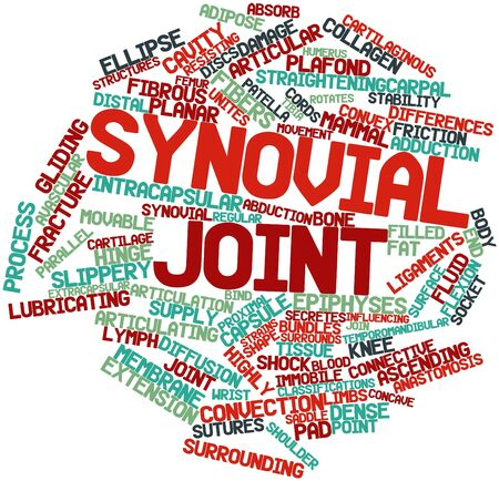 Abstract word cloud for Synovial joint with related tags and terms Stock Photo - 16678529