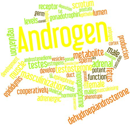 norepinephrine: Abstract word cloud for Androgen with related tags and terms