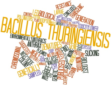 insoluble: Abstract word cloud for Bacillus thuringiensis with related tags and terms
