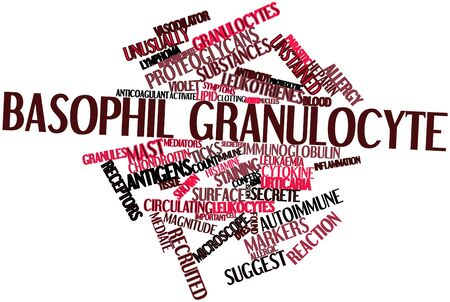 histamine: Abstract word cloud for Basophil granulocyte with related tags and terms Stock Photo