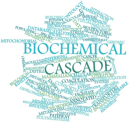 ontology: Abstract word cloud for Biochemical cascade with related tags and terms Stock Photo
