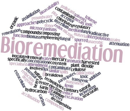 compounds: Abstract word cloud for Bioremediation with related tags and terms Stock Photo
