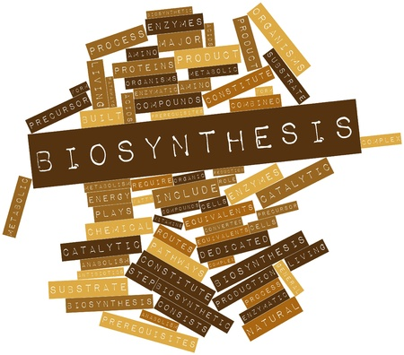 enzymes: Abstract word cloud for Biosynthesis with related tags and terms Stock Photo