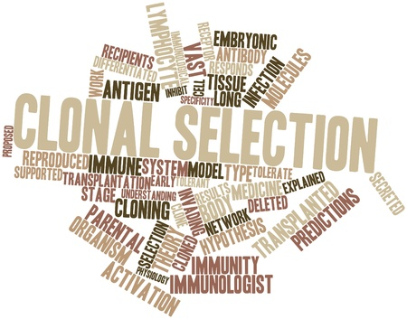 specificity: Abstract word cloud for Clonal selection with related tags and terms