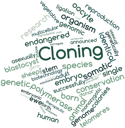 embryonic development: Abstract word cloud for Cloning with related tags and terms Stock Photo