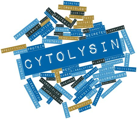 macrophages: Abstract word cloud for Cytolysin with related tags and terms
