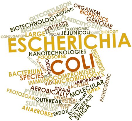 divergence: Abstract word cloud for Escherichia coli with related tags and terms